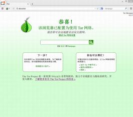 洋葱头浏览器 V4.0 中文版