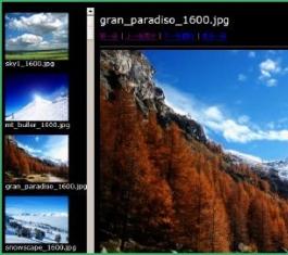 Picasa V3.9.141.259 官方版